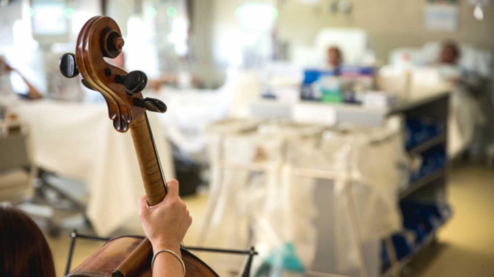 violin hospital
